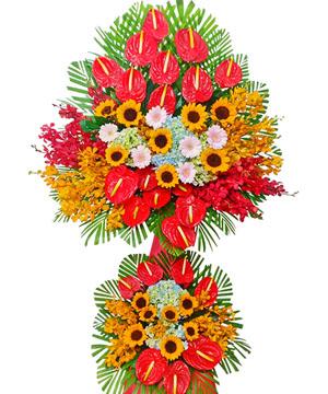 hoa chuc mung k181